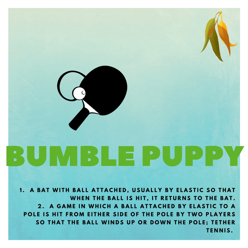 bumble puppy 1.  A BAT WITH BALL ATTACHED, USUALLY BY ELASTIC SO THAT WHEN THE BALL IS HIT, IT RETURNS TO THE BAT. 2.  A GAME IN WHICH A BALL ATTACHED BY ELASTIC TO A POLE IS HIT FROM EITHER SIDE OF THE POLE BY TWO PLAYERS SO THAT THE BALL WINDS UP OR DOWN THE POLE; TETHER TENNIS.