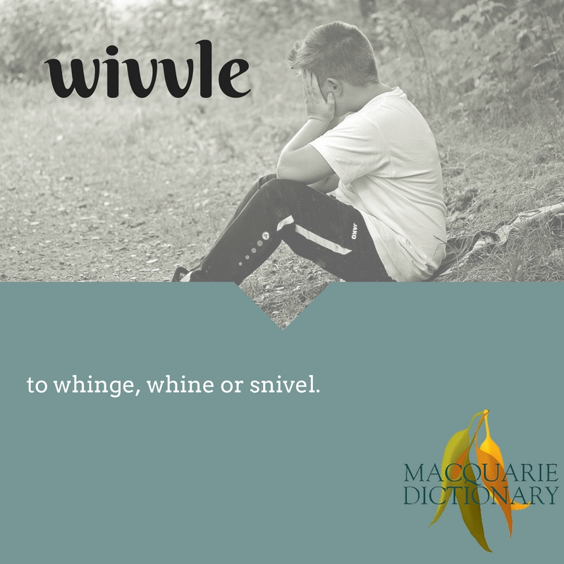 wivvle - to whinge, whine or snivel (verb) One who wivvels (noun)